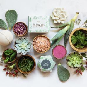 Succulent Calm + Inspired